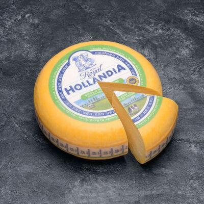 Gouda IGP Jeune, au lait pasteurisé, ROYAL HOLLANDIA