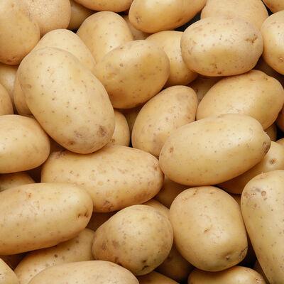 Pomme de terre Monalisa, nouvelle récolte de consommation, calibre 50+, catégorie 1, Italie, filet 2,5kg