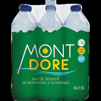 Eau de source de montagne d'Auvergne, MONT DORE, 6x1,5l