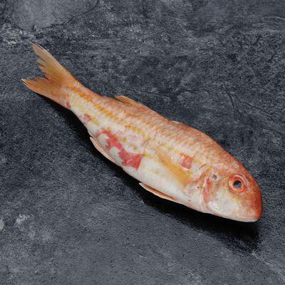 Filet de rouget barbet papillon, mullus barbatus, calibre 30/60, pêchéen Atlantique Nord Est