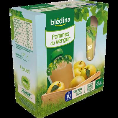 Gourdes 100% frts pommes du verger dès 10 mois BLEDINA, 4 gourdes de 90g