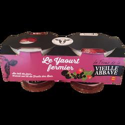 Yaourt fermier brassé sur lit de fruits des bois LA FERME DE LA VIEILLE ABBAYE, 2x125g