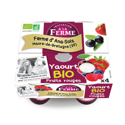 YAOURT FRUITS ROUGES BIO  4*125GR