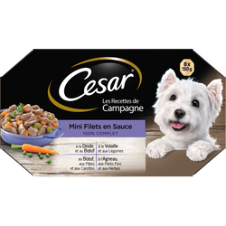 CESAR recette campagne mini filets en sauce pour chien, coffret de 8x150g