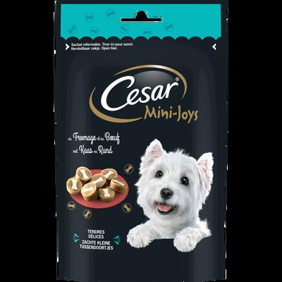 CESAR mini joys petites friandises fromage/boeuf pour chien, 100g