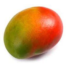 Mangue, la pièce origine espane