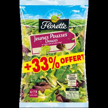 Florette Jeunes Pousses Douces (laitue Blonde,verte,red Chard,rouge,roquette),florette, Sachet, 175g+33% Offert