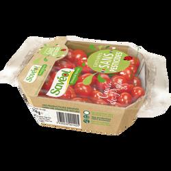 Tomate cerise, segment Les cerises allongées, catégorie Extra, France,barquette, 250g