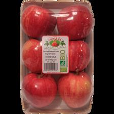Pomme Gala, BIO, calibre 136/165, catégorie 2, France, barquette 6 fruits