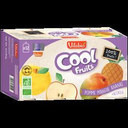 Cool fruits pomme mangue ananas VITABIO, 12 gourdes de 90g