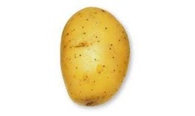 Pomme de terre colomba lavée filet 5kg calibre 45/75 France