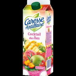 Nectar cocktail de fruits des îles CARESSE ANTILLAISE, 1l