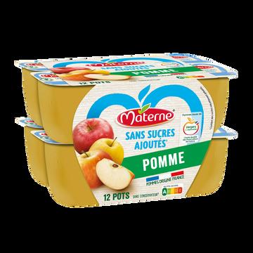 Materne Spécialité De Fruit Pomme Sans Sucres Ajouté Materne, 12x100g