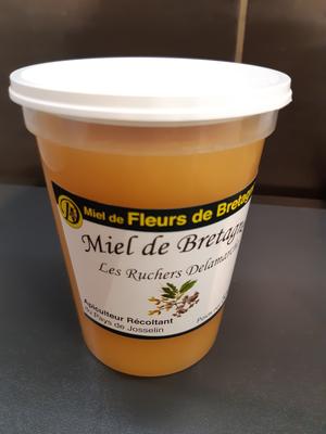 Miel fleurs de Bretagne 500g  Delamarche GUEGON