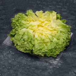 Salade Cresson de fontaine, BIO, catégorie 2, France