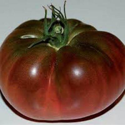 Tomate Noire De Crimee origine france categorie 2