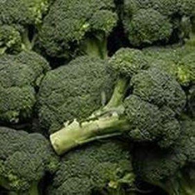 Brocolis Vrac origine espane