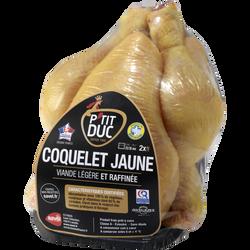 Coquelet jaune certifié prêt à cuire, PTIT DUC, France, 1 pièce